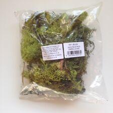 Javis - PAQUET en vrac vert lichen # jbulkg