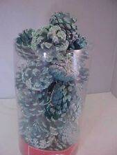 Turquoise Ornaments Real Pine Cones Blue Glitter Lot of 26 Total Various Sizes