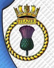 HMS TEAZER WALL SHIELD