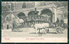 Perugia città Carro Buoi cartolina QZ2952