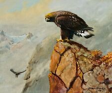 Original Golden Eagle Oil Painting by Allan Brooks. Signed, Museum Quality Frame