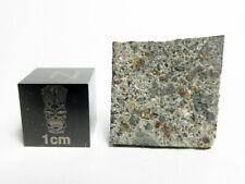 New listing Nwa 8617 Howardite 1.29g Part Slice of Triple Lithology Hed Meteorite