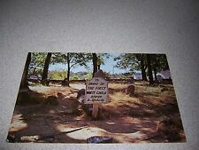 GRAVE of FIRST WHITE CHILD BURIED in KENTUCKY HARRODSBURG KY. VTG POSTCARD