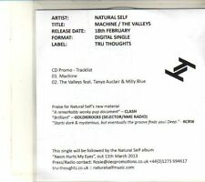 (DQ974) Machine / The Valleys, Natural Self - 2013 DJ CD