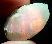 Ethiopian Opal Welo Rough ~VIDEO 19.24 CTs AAA FIRE Cutting Grade USA DEALER