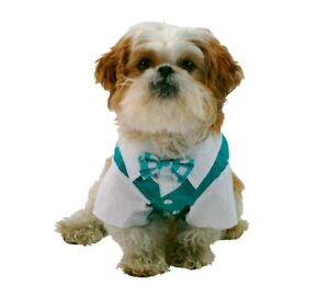 Pet Costume Shirt and Bow Tie Size Large Green Teal New
