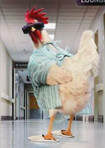 Get Well Greeting Card - Rooster in Hospital Gown