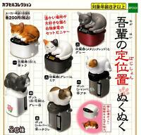 Cat figures All 6 are in the EPOCH place set Gashapon mascot toys Complete set
