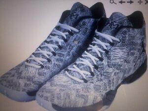 Joe Johnson 2015 15 NBA Playoffs Game Worn Used Shoes Sneakers Brooklyn Nets