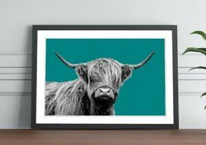 HIGHLAND COW BLACK AND WHITE TEAL FRAMED POSTER WALL ART PRINT ARTWORK DESIGN