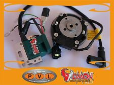 PVL Zündung Freiprogrammiert Digital Zündung Grasbahn Gespann GM Speedway Racing