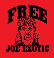 FREE JOE EXOTIC shirt Tiger King Documentary Carole Baskin Big Cat t-shirt