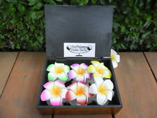 Frangipani Claw Hair Clips x 6 pcs in Hand Crafted Gift Box (elephant design)