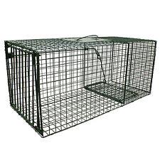 "Heavy Duty Large Cat Raccoon Fox Trap Cage Trap 36"" x15"" x 14""  Humane Live Trap"