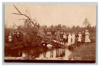 Vintage 1900's RPPC Postcard School Children Portrait On Tree in River