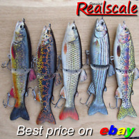 REALSCALE fishing jointed S-Glide swimbait pike perch hard lure plug bait shad !