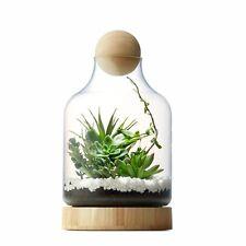 Terra Vase Glass And Wood Terrarium Succulents Display Home Wedding Decor