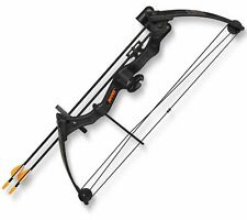 Bear Archery Brave Black Youth Bow Package AYS300BR