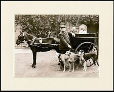 GREYHOUND MAN DOGS PONY AND CART DOG PHOTO PRINT MOUNTED READY TO FRAME