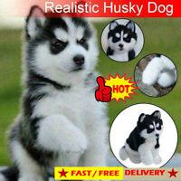 Realistic Husky Dog Simulation Toy Dog Puppy Lifelike Companion x Stuffed A2L5