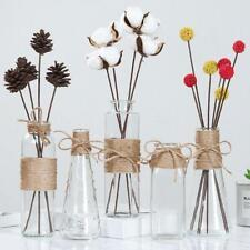 Glass Flowers Vase Desktop Stand Flower Pots For Hydroponic Plants Home Decor