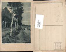 627280,Künstler Ak Hugo Darnaut Birkenallee Birken Bäume Allee