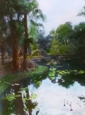 McKee Jungle Gardens Water Lillies,Vero Beach,Florida, Magic Lantern Glass Slide