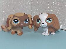 Littlest Pet Shop 2 Pc #1825 #2570 King Charles Spaniel Puppy Dog BlueGreen Eyes