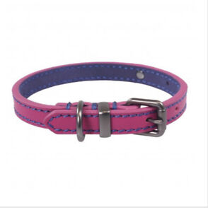 Joules For Dapper Dogs Pink Leather Dog Collar - Medium