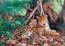 """Puzzle 3000 pieces 92*68cm """"Jaguars in the Jungle"""" Castorland C-300280"""