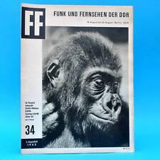 DDR FF-Dabei 34-1965 / 15.08.-21.08. Eisenhüttenstadt Tierpark Berlin Magdeburg