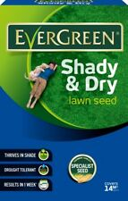 EverGreen Shady & Dry Lawn Grass Specialist Seed 420g Carton - Premium Quality