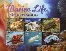 Bequia Grenadines St Vincent 2015 MNH Marine Life Mollusks 6v M/S Squid Stamps
