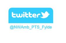 500 Custom Síganos en Twitter Pegatinas-social media advertising tienda de negocios