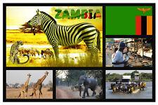 ZAMBIA, Africa - Negozio di souvenir novità Magnete del frigorifero - Regali -