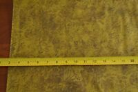 By 1/2 Yd, Olive on Olive Quilting Cotton, RJR/Jinny Beyer Palette/6340-10, B729