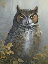 WATCHFUL EYE - OWL - 1000 PIECE JIGSAW PUZZLE - BRAND NEW - 48284