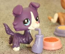 Purple Collie Dog Puppy Blue Eyes Littlest Pet Shop LPS Toys #1676+Accessories