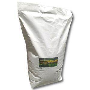 Pelouse ombragée 10 kg Graines de gazon Graines d'herbe Ombre Pelouse Graines