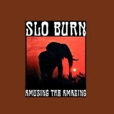 Slo Burn Amusing The Splatter Clear Brown Kyuss Vinyl Single 10inch