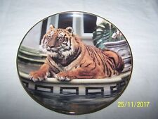 Franklin Mint ~ Reflective Tiger ~ Ron Kimball ~ Plate