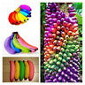 100Pcs Rainbow Banana Tree Seeds Delicious Bonsai Fruit Plant Home Garden Decor