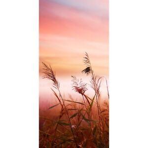"Tür Fototapete ""Pink Dunes "" ! 100x211 cm ! Sonnenaufgang Meer Strand Dünen Rosa"