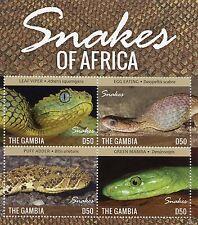 Gambia 2015 MNH serpenti dell' Africa 4V M / S RETTILI FOGLIA VIPER sbuffo Adder Mamba