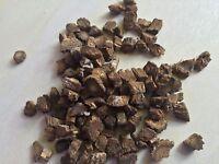 Burdock Root, Arctium lappa (Organic) ~ Sacred Herbs from Schmerbals Herbals