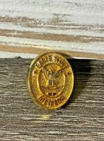 Eagle Scout Mentor Recognition Pin, Oval Gold-Toned Metal, BSA- Boy Scouts