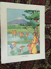 Poster Vintage escuelas-un campo de arroz - 1930s/1940s