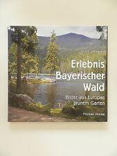 Friedl Thorward Erlebnis Bayerischer Wald Bilder aus Europas grünem Garten