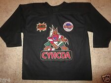 Phoenix Arizona Coyotes NHL Hockey Picasso CCM Black Jersey LG L mens yotes
