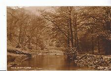 Derbyshire Postcard - In Dovedale       ZZ3058